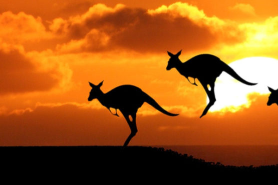 Moving to Australia Process